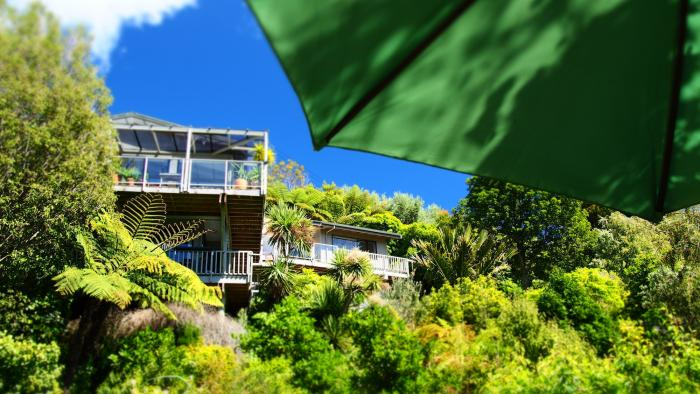 Living with the Birds and Native bush Cable Bay Lodge - Treehouse Hideaway