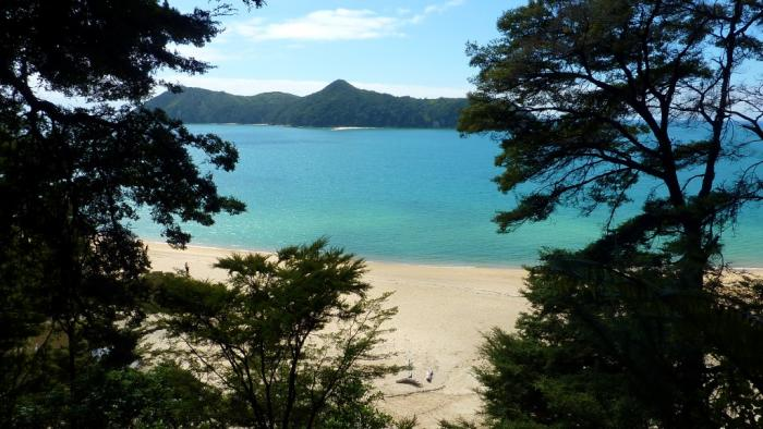 Photo1 Medium Day Tours in the Abel Tasman Area