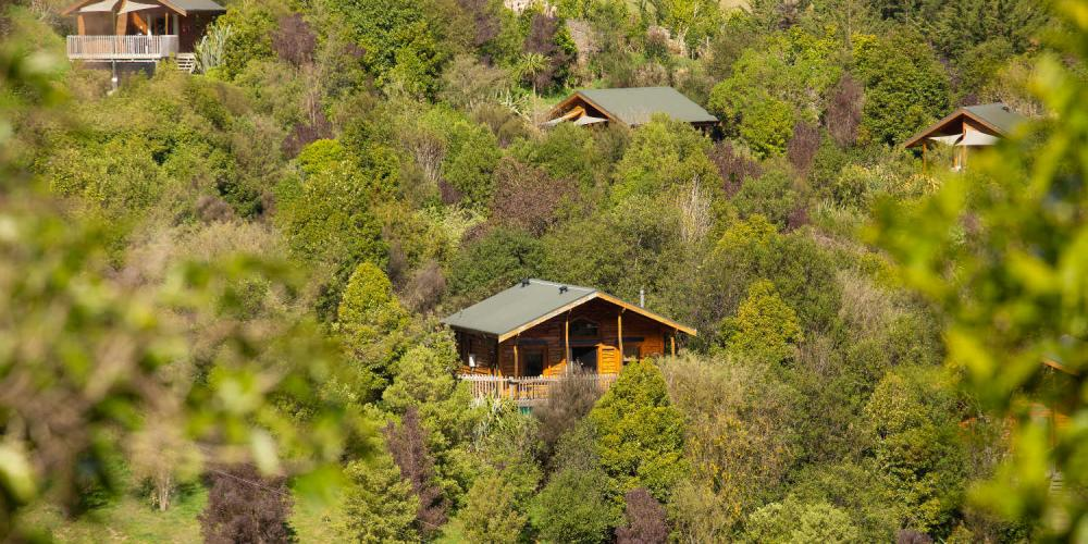 Bush Suites The Resurgence Luxury Eco Lodge