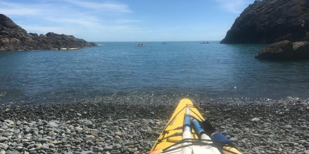 Cable Bay Kayaks Beach Cable Bay Kayaks - Experience untapped New Zealand