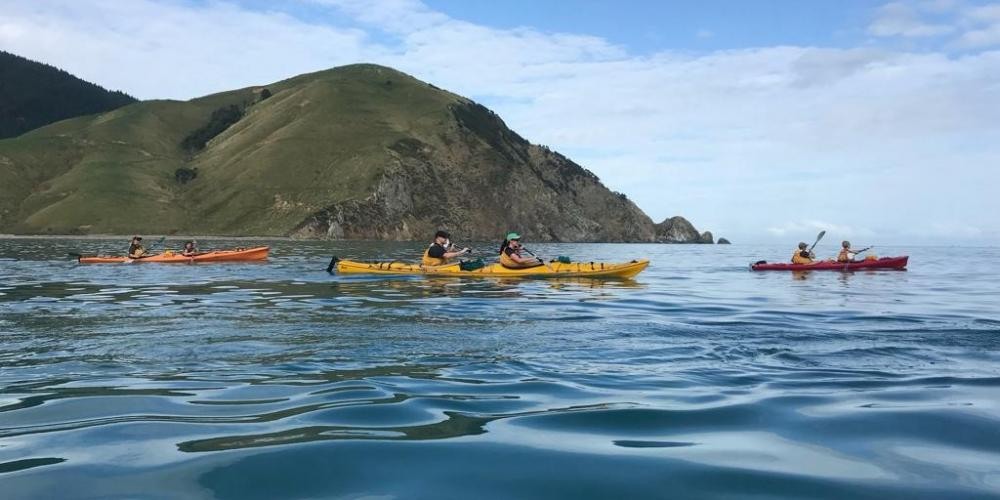 Cable Bay Kayaks Calm Water Cable Bay Kayaks - Experience untapped New Zealand