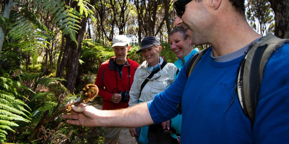 Guided Walk3 Abel Tasman Eco Boat Tours