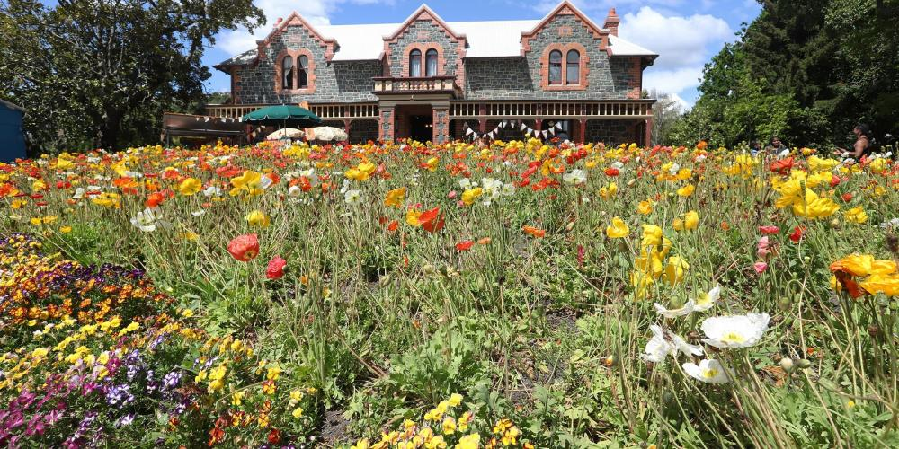 Isel House and Park credit Nelson City Council 3 Isel Park