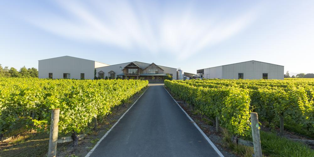 Seifried Estate Winery Nelson New Zealand. SMALL Seifried Estate