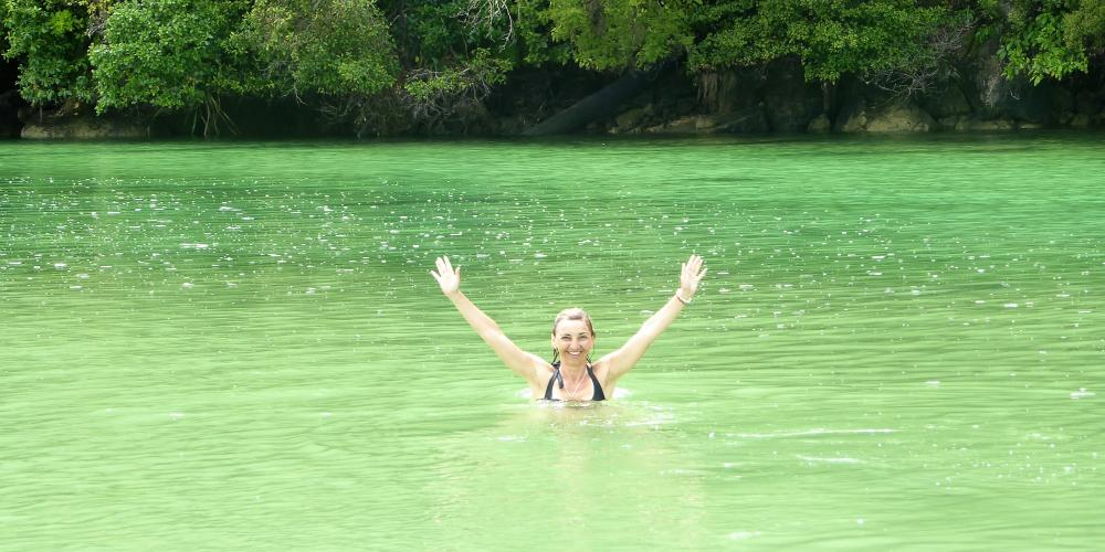 Swimming Abel Tasman Eco Boat Tours