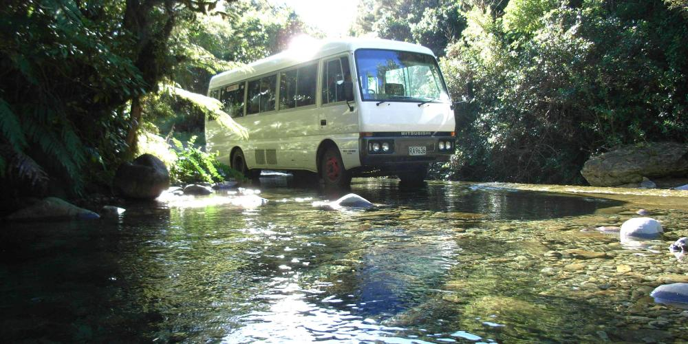 bus in creek Trek Express